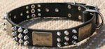 Spiked Leather Dog Collar with Brass Massive Plates&Spikes