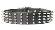 2 inch wide Leather Spiked Dog Collar for working dogs