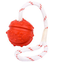 Similar to Everlasting Fun Ball on a Rope for training dogs