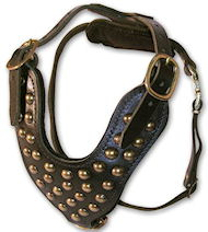 Handmade Studded Leather Walking dog harness for All breeds