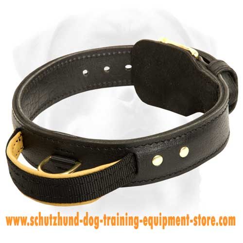 Great Leather Dog Collar