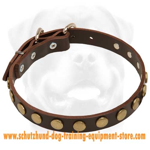Unique Leather Dog Collar