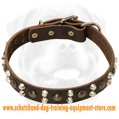 Leather Dog Collar Ergonomic Design