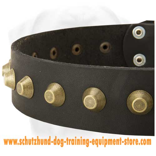 Comfy Leather Dog Collar