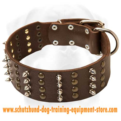 Extra Cool Leather Dog Collar