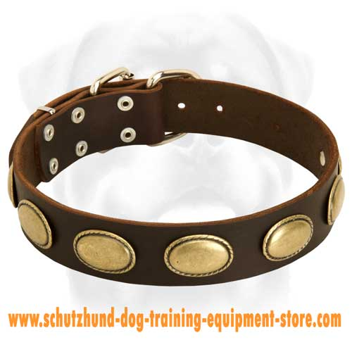 Royal Leather Dog Collar