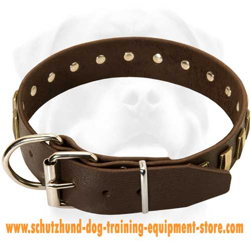 Leather Dog Collar With Nickel Plated Buckle
