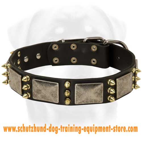 Leather Dog Collar For Comfortable Walking