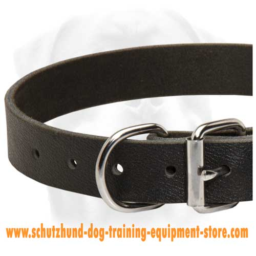 Top Grade Leather Dog Collar