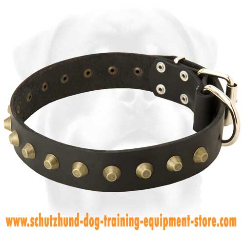 Leather Dog Collar Of A Fine Design