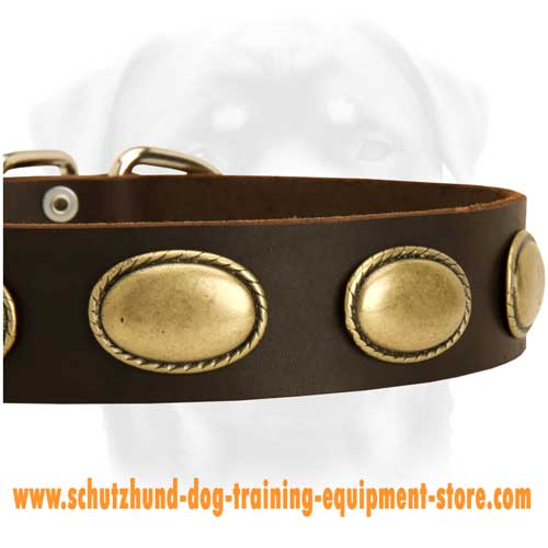 Leather Dog Collar With Oval Brass Plates