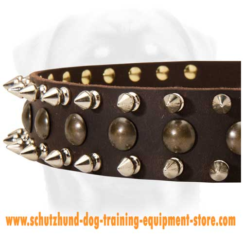 Leather Dog Collar Walking In Style