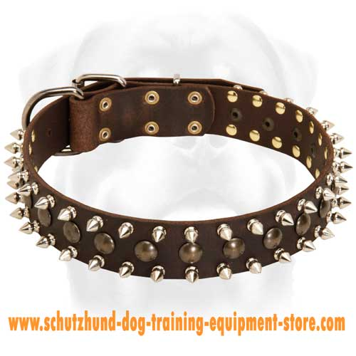 Leather Dog Collar Daily Use