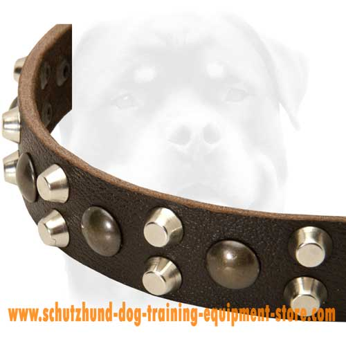 Leather Dog Collar Studs And Halfcones