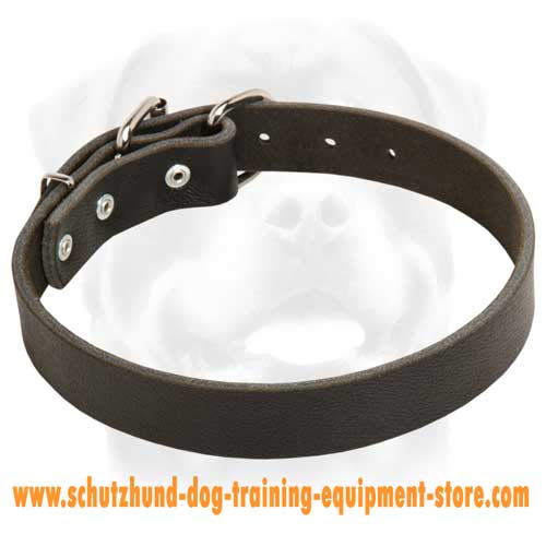 Leather Dog Collar For Easy Walking