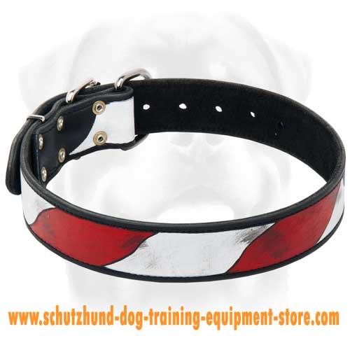 Leather Dog Collar With Amazing Design