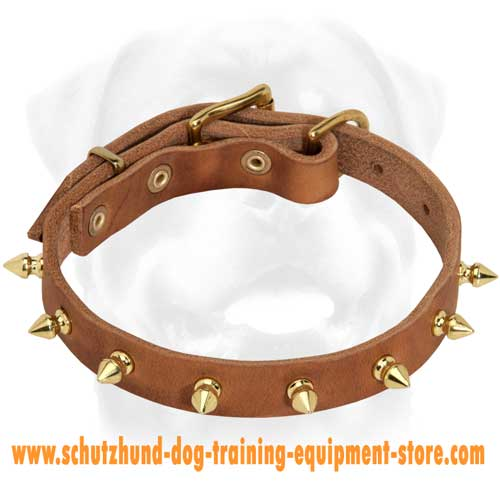 Excellent Leather Dog Collar