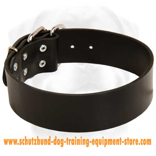 Strict Leather Dog Collar