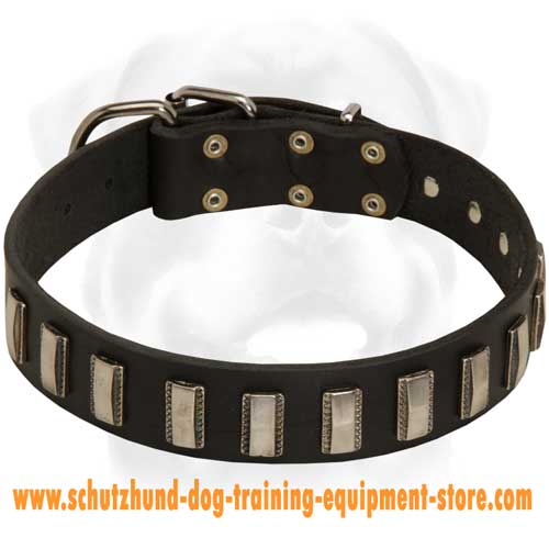 Special Leather Dog Collar