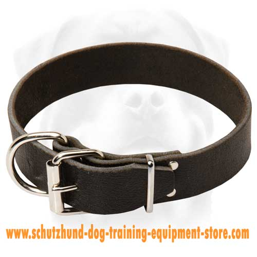 Leather Dog Collar For Off Leash Training