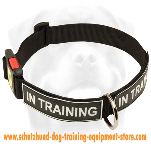 Strong Nylon Dog Collar