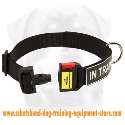 Nylon Dog Collar For Easy Walking