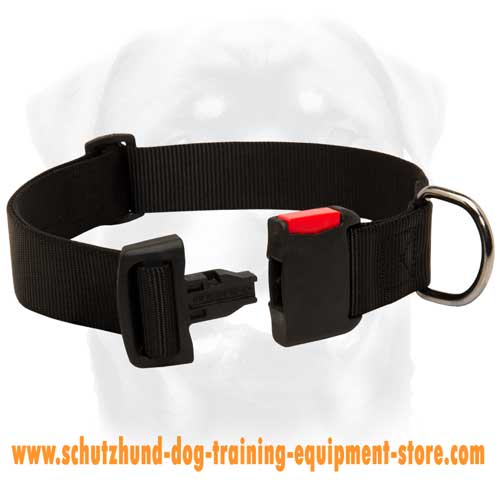 Amazing Nylon Dog Collar