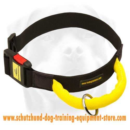Grand Nylon Dog Collar