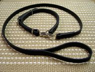 Schutzhund Training dog leash and collar (combo)