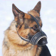 Anti-Barking Leather Dog Muzzle