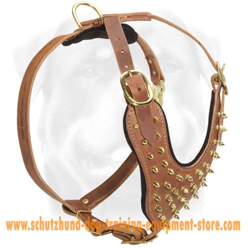 Charming Leather Dog Harness