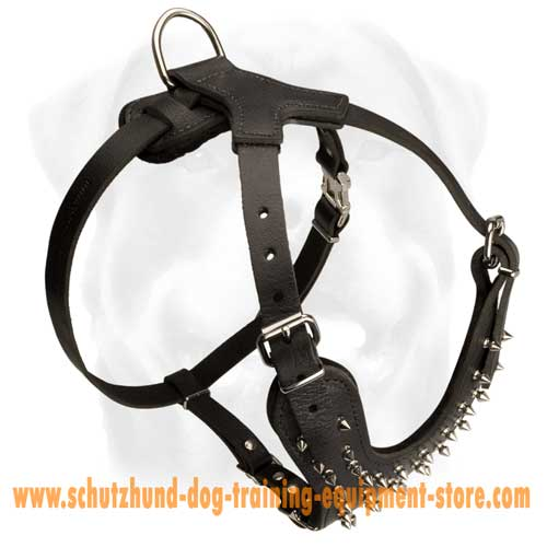 Unordinary Leather Dog Harness