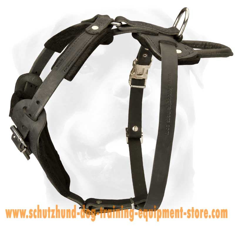 Padded Dog Harness For Working Dogs [H1###1096 Leather harness with