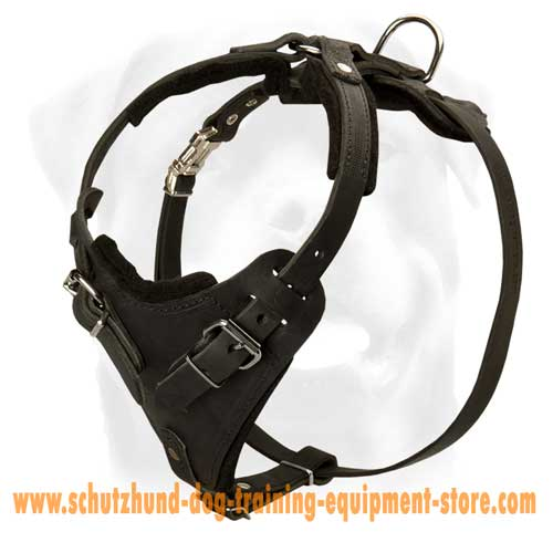 Great Leather Dog Harness