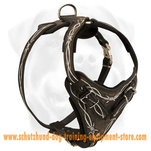 Perfect Leather Dog Harness
