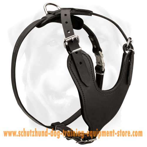 Leather Dog Harness With Amazing Design