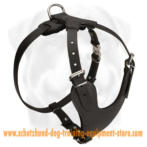 Cool Leather Dog Harness