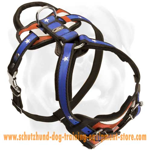 Leather Dog Harness For Walks In Style