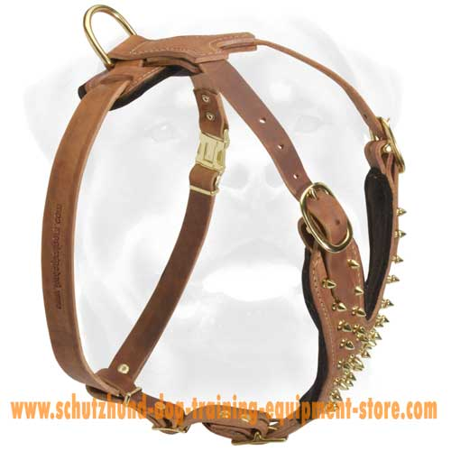 Gorgeous Leather Dog Harness