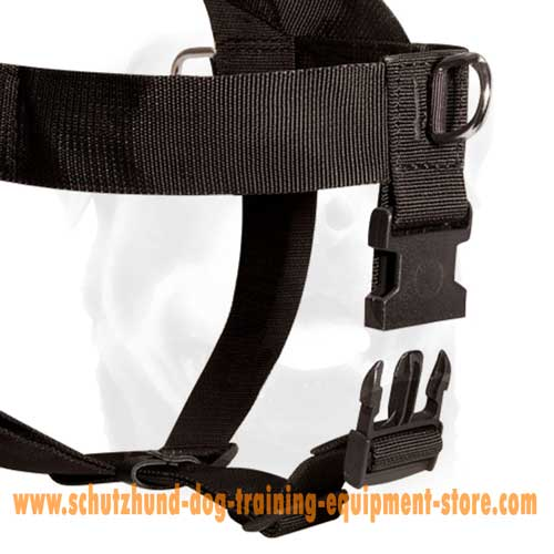Unusual Nylon Dog Harness