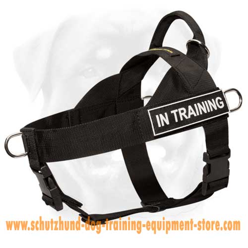 Safe Nylon Dog Harness