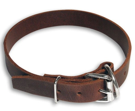1 inch Dog Collar-One inch Leather Collar for working dogs