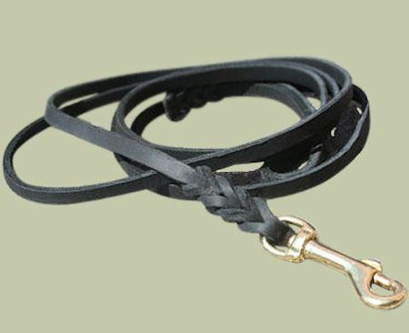 K9 Sport Leash-3/8'' all Weather Leash for Dog