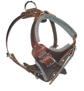 SIMILAR to Gappay Leather Defense Harness for training dogs