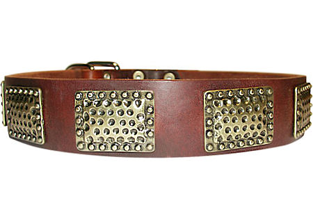 Luxury Leather Dog Collar for Working Dogs