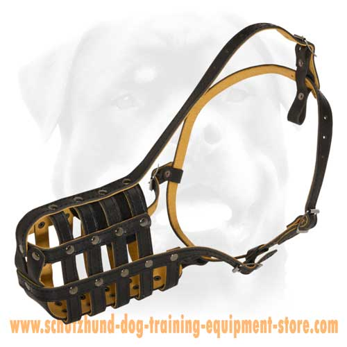 Precious Nappa Padded Leather Dog Muzzle