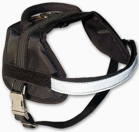 Multifunctional Dog Harness for Training