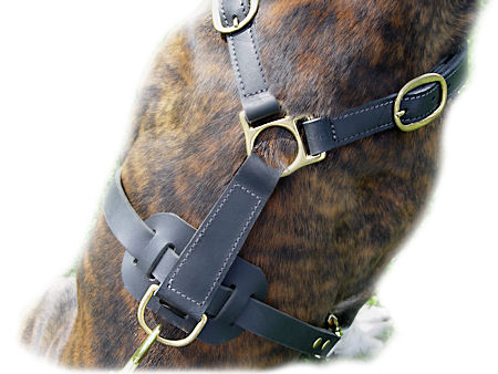 Ultimate Tracking Harness for Dog
