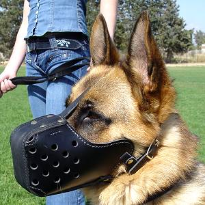 "German Shepherd agitation Leather dog muzzle ""Dondi"" style"