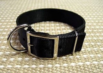Looking for 2 Ply Nylon collar for Schutzhund Training